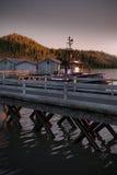 Ένα καλό περιβάλλον εργοστασίων ψαριών στην ανατολή, που διευκρινίζεται σε τρισδιάστατο Στοκ Εικόνες