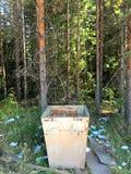Ένα κενό δοχείο απορριμμάτων είναι στο δάσος στοκ εικόνες
