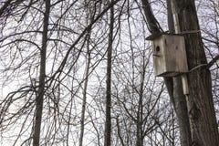 Ένα κενό ξύλινο birdhouse σε ένα χειμερινό πάρκο Στοκ φωτογραφίες με δικαίωμα ελεύθερης χρήσης