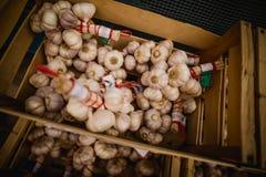 Ένα κιβώτιο του σκόρδου στο νότο της Γαλλίας Στοκ Εικόνες
