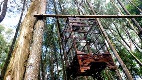 Ένα κλουβί πουλιών φιαγμένο από ξύλο στοκ εικόνες