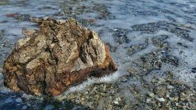 Ένα κομμάτι του ξύλου στη θάλασσα Στοκ Φωτογραφίες