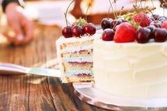 Ένα κομμάτι του σπιτικού κέικ frash με τα φρέσκα μούρα και τα φρούτα στοκ φωτογραφία με δικαίωμα ελεύθερης χρήσης