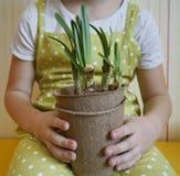 Ένα κορίτσι κάθεται με ένα daffodil στα χέρια της Φύτευση των εγκαταστάσεων Άνοιξη Ένα εορταστικό Πάσχα Στοκ Εικόνες