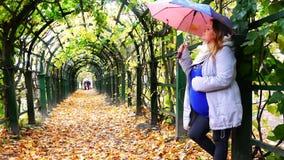 Ένα κορίτσι με ένα μωρό στη μήτρα στέκεται κάτω από μια ομπρέλα σε μια λεωφόρο στο βροχερό καιρό φθινοπώρου φιλμ μικρού μήκους