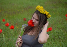 Ένα κορίτσι με ένα στεφάνι των πικραλίδων στο κεφάλι της Όμορφο νέο κορίτσι νεράιδων σε έναν τομέα μεταξύ των λουλουδιών των τουλ Στοκ εικόνα με δικαίωμα ελεύθερης χρήσης