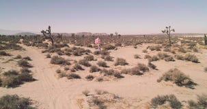 Ένα κορίτσι με τα μπαλόνια που περπατά στον αντικατοπτρισμό EL λιμνών ερήμων Εναέριος κηφήνας Τον Οκτώβριο του 2017 απόθεμα βίντεο