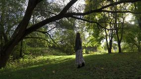 Ένα κορίτσι οδηγά σε μια ταλάντευση στο πάρκο απόθεμα βίντεο
