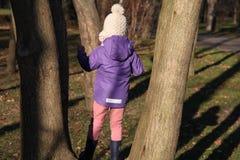 Ένα κορίτσι σε ένα δέντρο στοκ εικόνα με δικαίωμα ελεύθερης χρήσης