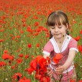 Ένα κορίτσι συλλέγει τα λουλούδια παπαρουνών Στοκ Φωτογραφία