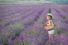 Ένα κορίτσι Brunette σε ένα καπέλο αχύρου που κρατά ένα καλάθι με lavender Ένα κορίτσι Brunette με δύο πλεξούδες σε έναν lavender Στοκ Εικόνα