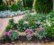 Ένα κρεβάτι λουλουδιών στον κήπο Στοκ Φωτογραφία