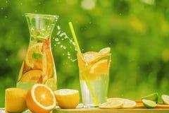 Ένα κρύο ποτό με τα φρούτα, κομμάτια των φρούτων και των εσπεριδοειδών, ένας ψεκασμός που πετούν από ένα γυαλί με ένα ποτό σε ένα στοκ εικόνες με δικαίωμα ελεύθερης χρήσης
