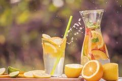 Ένα κρύο ποτό με τα φρούτα, κομμάτια των φρούτων και των εσπεριδοειδών, ένας ψεκασμός που πετούν από ένα γυαλί με ένα ποτό στοκ εικόνες με δικαίωμα ελεύθερης χρήσης