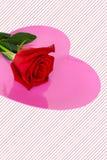 Ένα κόκκινο αυξήθηκε τοποθετημένος πάνω από τη φωτεινή ρόδινη καρδιά το ριγωτό υπόβαθρο στοκ εικόνα
