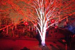 Ένα κόκκινο φωτισμένο δέντρο με τα μπιχλιμπίδια Χριστουγέννων που κρεμούν από το Στοκ Εικόνα