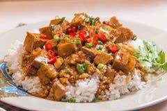 Ένα κύπελλο του ρυζιού με το κρέας στοκ φωτογραφίες με δικαίωμα ελεύθερης χρήσης