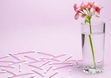 Ένα λουλούδι γερανιών του χρώματος κοραλλιών στέκεται σε μια κούπα γυαλιού με το σαφές νερό σε ένα κλίμα ενός λεπτού χρώματος κορ στοκ φωτογραφία με δικαίωμα ελεύθερης χρήσης
