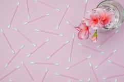 Ένα λουλούδι γερανιών του χρώματος κοραλλιών στέκεται σε μια κούπα γυαλιού με το σαφές νερό σε ένα κλίμα ενός λεπτού χρώματος κορ στοκ φωτογραφίες με δικαίωμα ελεύθερης χρήσης