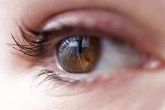 Ένα μάτι Στοκ φωτογραφία με δικαίωμα ελεύθερης χρήσης