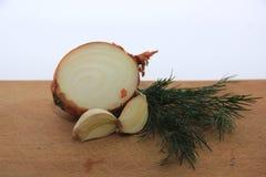 Ένα μίγμα του σκόρδου, του κρεμμυδιού και του άνηθου στοκ φωτογραφίες με δικαίωμα ελεύθερης χρήσης