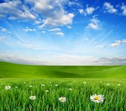 Ένα μαγικό τοπίο με την πράσινους χλόη και το μπλε ουρανό Στοκ εικόνες με δικαίωμα ελεύθερης χρήσης