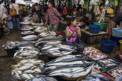 Ένα μεγάλο ψάρι στο ΜΙΑΝΜΆΡ - τη ΒΙΡΜΑΝΙΑ στοκ φωτογραφίες