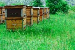 Ένα μελισσουργείο στο οποίο το φιλικό προς το περιβάλλον μέλι παράγεται Οι κυψέλες βρίσκονται σε μια ορεινή θέση Μέλι βουνών Στοκ Φωτογραφίες