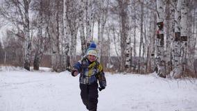 Ένα μικρό αγόρι πηγαίνει στα ξύλα στο χιόνι απόθεμα βίντεο