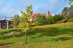 Ένα μικρό δέντρο με το παλαιό σπίτι και μια χλόη σε ένα υπόβαθρο στοκ εικόνες