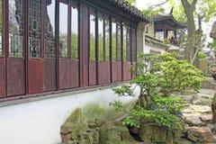 Ένα μικρό εσωτερικό κινεζικό προαύλιο και δέντρα πόλη Σαγγάη στοκ φωτογραφίες