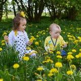 Ένα μικρό κορίτσι και λίγο ένα μικρό αγόρι συγκεντρώνει τα κίτρινα λουλούδια στοκ φωτογραφία με δικαίωμα ελεύθερης χρήσης