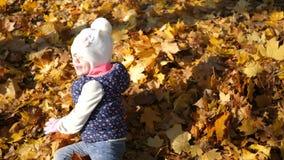Ένα μικρό κορίτσι τρέχει και περιέρχεται σε έναν σωρό των κίτρινων φύλλων, χαρά, ευτυχία, μια θερμή ημέρα φθινοπώρου απόθεμα βίντεο