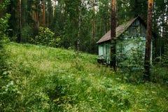 Ένα μικρό σπίτι σε ένα δάσος πεύκων στοκ εικόνα