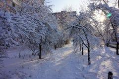 Ένα μονοπάτι σε μια χειμερινή πόλη στοκ φωτογραφίες με δικαίωμα ελεύθερης χρήσης