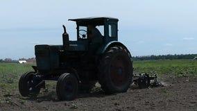 Ένα μπλε τρακτέρ καλλιεργεί τον αγρο τομέα μια ηλιόλουστη ημέρα το καλοκαίρι απόθεμα βίντεο