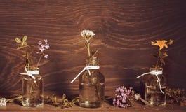 Ένα μπουκάλι του ουσιαστικού πετρελαίου με τα χορτάρια και τις ιατρικές εγκαταστάσεις, wort του ST John ` s, yarrow, θυμάρι, που  Στοκ Εικόνες