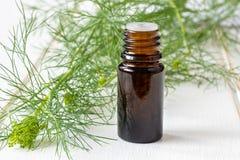 Ένα μπουκάλι του πετρελαίου σπόρου άνηθου με τη φρέσκια άνθιση Anethum graveolens Στοκ φωτογραφία με δικαίωμα ελεύθερης χρήσης
