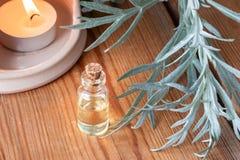 Ένα μπουκάλι wormwood του ουσιαστικού πετρελαίου με τους φρέσκους wormwood κλαδίσκους Στοκ Εικόνες