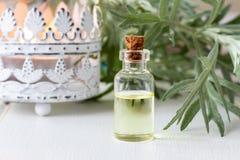 Ένα μπουκάλι wormwood του ουσιαστικού πετρελαίου με φρέσκο Artemisia Absinthi Στοκ φωτογραφίες με δικαίωμα ελεύθερης χρήσης