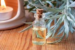Ένα μπουκάλι wormwood του ουσιαστικού πετρελαίου με φρέσκο Artemisia Absinthi Στοκ φωτογραφία με δικαίωμα ελεύθερης χρήσης