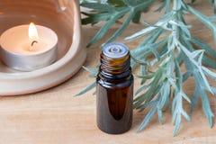 Ένα μπουκάλι wormwood του ουσιαστικού πετρελαίου με φρέσκο Artemisia Absinthi Στοκ εικόνες με δικαίωμα ελεύθερης χρήσης