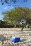 Ένα μπλε δοχείο ψύξης στην άσπρη άμμο μιας παραλίας σε ένα εθνικό πάρκο στη Βενεζουέλα Στοκ φωτογραφία με δικαίωμα ελεύθερης χρήσης