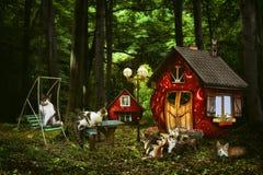 Ένα μυθικό χωριό στο οποίο ζωντανές σφραγίδες στα όμορφα σπίτια Στοκ Φωτογραφία
