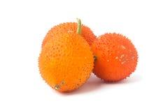 Ένα μωρό Jackfruit νοτιοανατολικών ασιατικό φρούτων Στοκ εικόνες με δικαίωμα ελεύθερης χρήσης