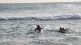 Ένα νέο ζεύγος των surfers κολυμπά στον ωκεανό στις ιστιοσανίδες τους απόθεμα βίντεο