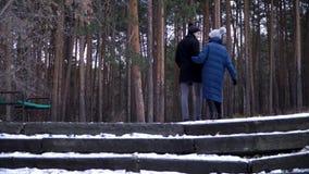 Ένα νέο και όμορφο ζεύγος περπατά στο χειμερινό πάρκο, αγκαλιάζει και έχει τη διασκέδαση Η ημέρα και ιστορία αγάπης ενός βαλεντίν στοκ φωτογραφίες με δικαίωμα ελεύθερης χρήσης