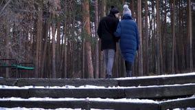 Ένα νέο και όμορφο ζεύγος περπατά στο χειμερινό πάρκο, αγκαλιάζει και έχει τη διασκέδαση Η ημέρα και ιστορία αγάπης ενός βαλεντίν στοκ εικόνες
