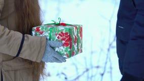 Ένα νέο κορίτσι με μακρυμάλλη στα χιονώδη ξύλα δίνει το δώρο στο νεαρό άνδρα φιλμ μικρού μήκους