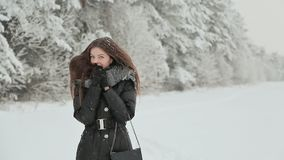 Ένα νέο κορίτσι στα χειμερινά ενδύματα με μακρυμάλλη απολαμβάνει έναν περίπατο κατά μήκος του χιονισμένου δάσους κάτω από το μειω απόθεμα βίντεο